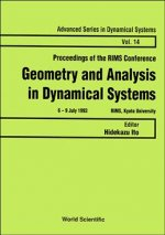 Geometry and Analysis in Dynamical Systems
