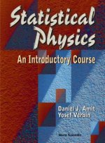 Introductory Course in Statistical Physics