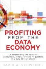 Profiting from the Data Economy