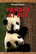 Pandas in Danger
