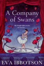 Company of Swans