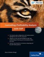 Controlling-profitability Analysis (CO-PA) with SAP