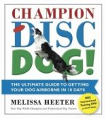Champion Disc Dog