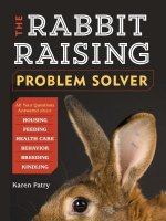 Rabbit-raising Problem Solver