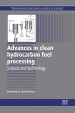 Advances in Clean Hydrocarbon Fuel Processing