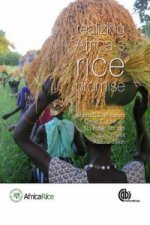 Realizing Africa's Rice Promise