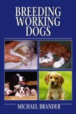 Breeding Working Dogs