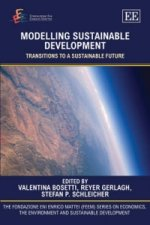 Modelling Sustainable Development