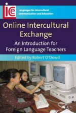 Online Intercultural Exchange