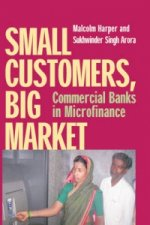 Small Customers, Big Market