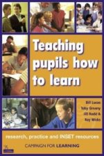 Teaching Pupils How to Learn