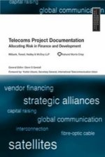Telecoms Project Documentation: Allocating Risk in Finance and Development