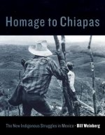 Homage to Chiapas