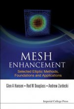 Mesh Enhancement