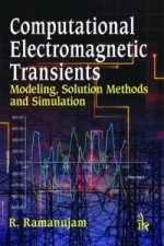 Computational Electromagnetic Transients