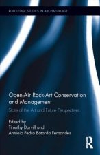 Open-Air Rock Art Conservation and Management