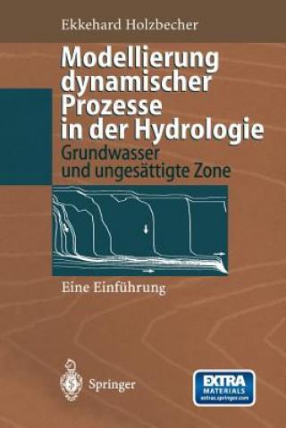 Modellierung dynamischer Prozesse in der Hydrologie, 1