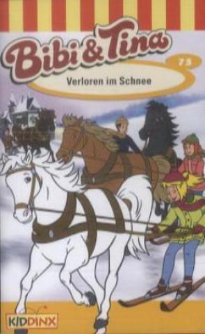Bibi & Tina - Verloren im Schnee, 1 Cassette