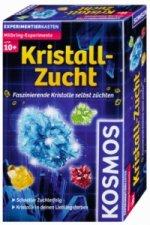 Kristall-Zucht (Experimentierkasten)