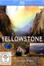 Yellowstone, 1 Blu-ray