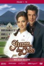 Sturm der Liebe. Staffel.1, 3 DVD