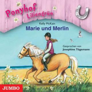 Ponyhof Liliengrün - Marie und Merlin