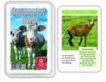 Bauernhof Tiere, Quartett