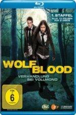 Wolfblood - Verwandlung bei Vollmond, 2 Blu-rays. Staffel.1