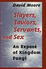 Slayers, Saviors, Servants and Sex