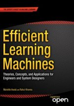 Efficient Learning Machines