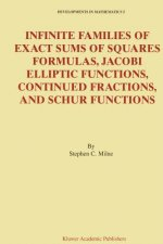 Infinite Families of Exact Sums of Squares Formulas, Jacobi Elliptic Functions, Continued Fractions, and Schur Functions