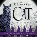 Enchanted Cat