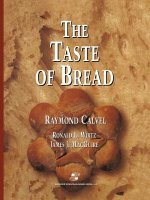 The Taste of Bread