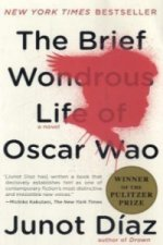 EXP Brief Wondrous Life of Oscar Wao