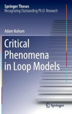 Critical Phenomena in Loop Models