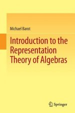 Introduction to the Representation Theory of Algebras, 1
