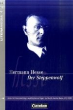 Hermann Hesse 'Der Steppenwolf'