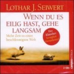 Wenn Du es eilig hast, gehe langsam, 2 Audio-CDs. Slow down to speed up, deutsche Ausgabe