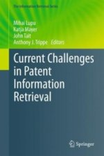 Current Challenges in Patent Information Retrieval