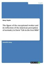 De profundis clamavi   analysing the figure of the exceptional worker in Davis  'Life in the Iron Mills', and its reflection of the American perceptio