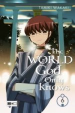 The World God Only Knows. Bd.6