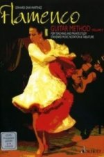Flamenco Guitar Method, m. DVD (PAL-System). Vol.2