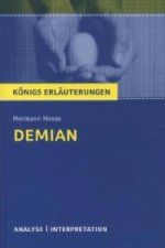 Hermann Hesse 'Demian'