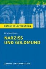 Hermann Hesse 'Narziss und Goldmund'