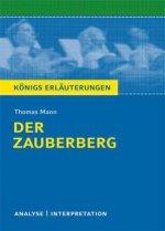 Thomas Mann 'Der Zauberberg'