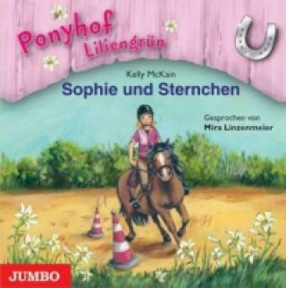 Ponyhof Liliengrün - Sophie und Sternchen