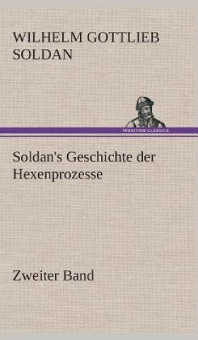Soldans Geschichte Der Hexenprozesse Zweiter Band