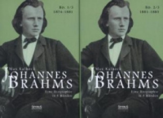 Johannes Brahms. Eine Biographie in vier Bänden. Band 3