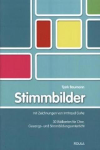 Stimmbilder, 30 Bildkartons m. Begleitbuch
