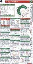 EKG pocketcard, Kartenfächer